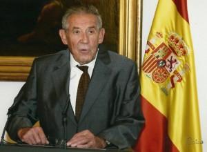 D. Francisco Rubio Llorente: